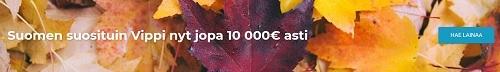 Hae joustavaa luottoa 100-10.000 euroa tarjoavasta uudistunesta Vippi -lainapalvelusta.