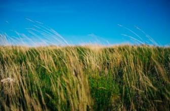 Lainaa ilman vakuuksia – Vakuudeton laina